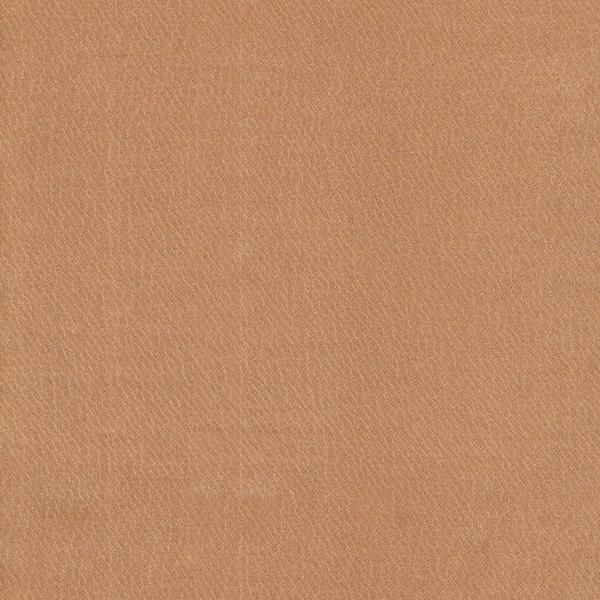 BB795