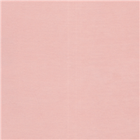 *3 1/2 YD PC--Soft Peach T-Shirt Knit