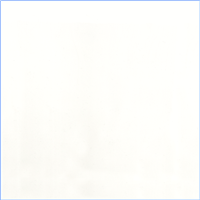 *2 YD PC--Ivory Sheer Solid