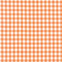 *1 YD PC--Orange 1/4 Inch Gingham