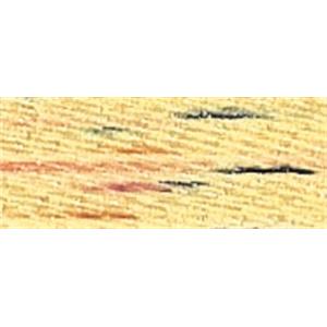 NMC025329