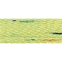 NMC025330