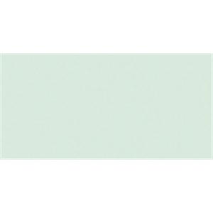 NMC025491