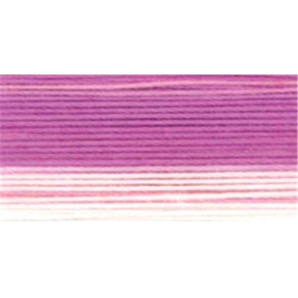 NMC026041