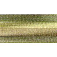 NMC050826