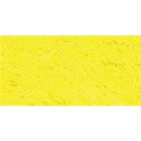 NMC061408