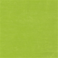 *2 5/8 YD PC--Lime Slinky