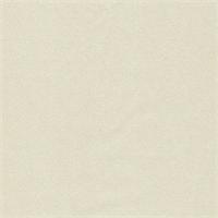 *4 YD PC--Ivory Silk Charmeuse