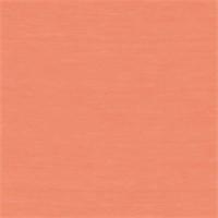*2 1/2 YD PC--Melon Sherbet Modal Jersey Knit