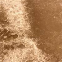 Gold Majilite Vinyl