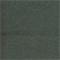 DFW50838