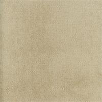 DFW51162