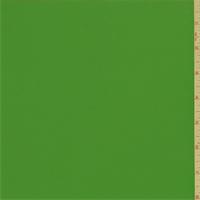 Rainforest Green Swimwear