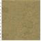 DFW51529