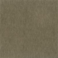 DFW51670