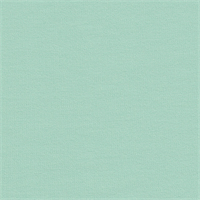 *2 7/8 YD PC--Sea Green Ponte Knit