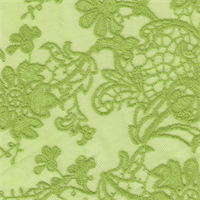 *3 YD PC--Lime Green Mesh with Borders