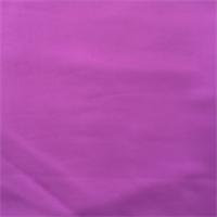 Grape Purple Swimwear