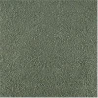 DFW51904