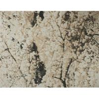 *1 1/4 YD PC--Beige/Gray Tree Print Scuba Knit