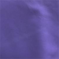 Purple Swimwear