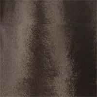 DFW52336