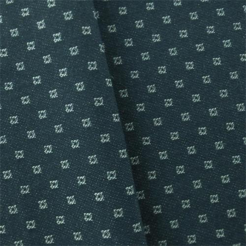 DFW53037