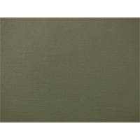 *2 YD PC--Sage Beige Cotton Canvas Duck Home Decorating Fabric