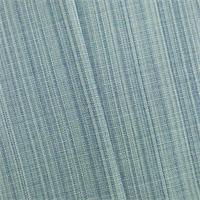 DFW53304