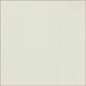 Pale Sage Green Charmeuse 17650 Discount Fabrics