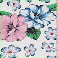 White/Black/Pink Floral Mesh