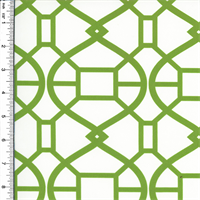 *3 YDPC--Designer Green/White Rimwork Print Velveteen Performance Home Decorating Fabric
