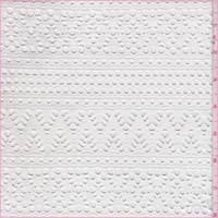 White Stripe Mesh Lace