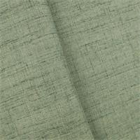 DFW53580
