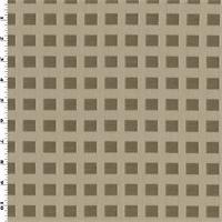 DFW53631