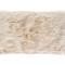 NMC111563