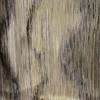 *4 YD PC--Striped Silk Charmeuse