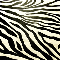 *1 1/8 YD PC-- White/Black Zebra Faux Suede Home Decorating Fabric