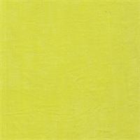 *2 YD PC--Citron Slinky