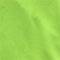 *2 YD PC--Neon Green Swimwear