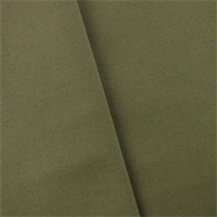 *1 1/2 YD PC - Dark Olive Green Indoor/Outdoor Canvas Decorating Fabric