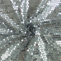 *3 1/2 YD PC--Metallic Platinum Sequin Mesh
