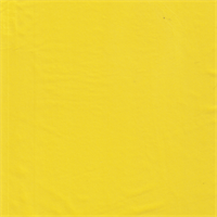 *5 YD PC--Yellow Activewear