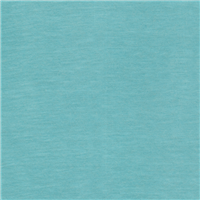 *4 YD PC--Aqua Green T-Shirt Knit