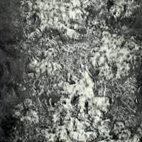 DFW11135