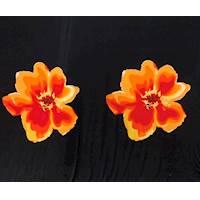 *1 PANEL--Black/Orange/Red Bold Modern Floral Jersey Knit