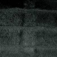 DFW11169
