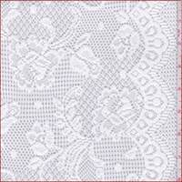 *3 5/8 YD PC--White Scroll Floral Lace Mesh