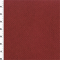 *3 YD PC--Polartec Double Sided Curly Fleece - Ruby