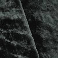 DFW56281
